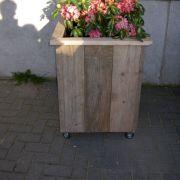 bloembak-80-x-80-cm